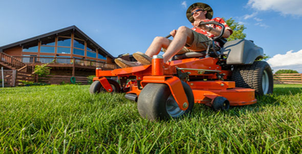 Essential Tools for Easy Lawn and Garden Maintenance